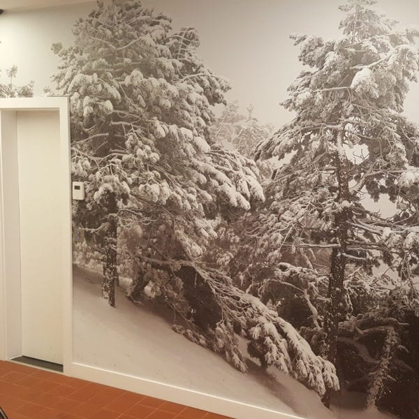 20170128 144135 600x600 - Wallpaper, Floor Graphic & Cut Vinyl